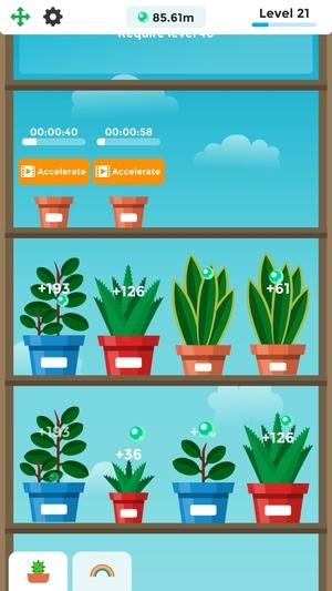 Terrarium: Garden Idle1