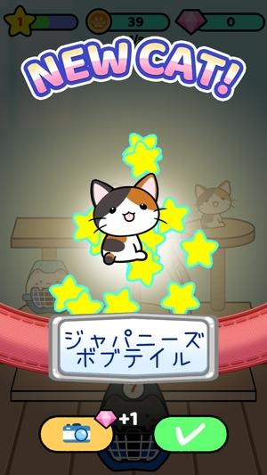 Cat Condo 2 3