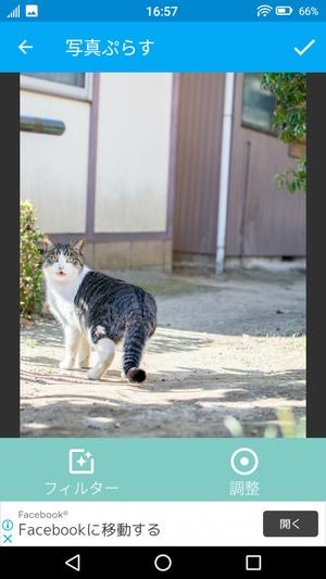 写真ぷらす9