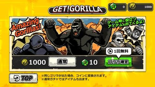 ゴリラ・オンライン11